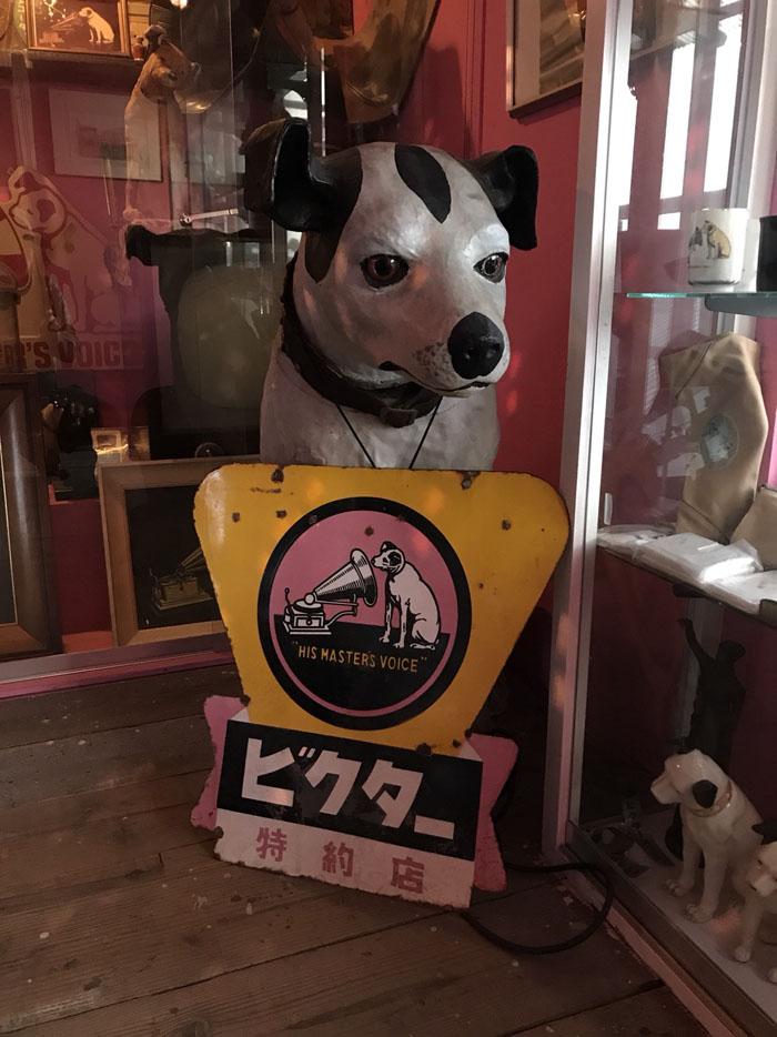 倉敷DOG資料館4